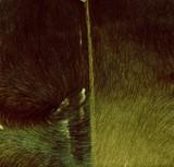 green fur poster