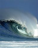 wave at backdoor hawaii poster