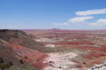 painted desert 6