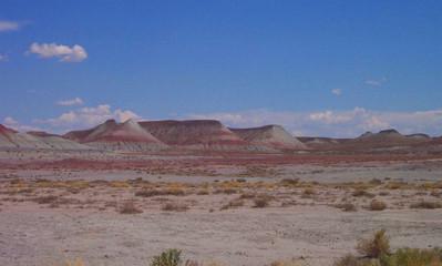 painted desert 9