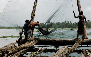 india, cochin: chinese fiching nets