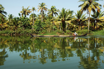 india, kerala: landscape