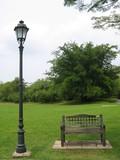 botanical garden - lone bench poster