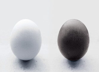 egg against racism