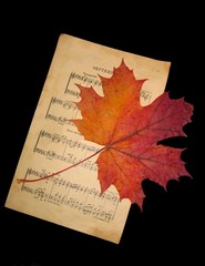 music and leaf
