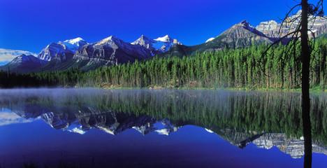 herbert lake 1