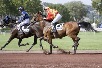 course de chevaux - trot monté