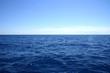 horizon - 1454301