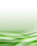 Fototapety background green