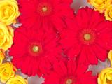 flower pattern - 1458346