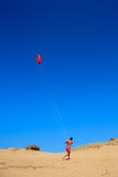 person flying a kite at the beach poster