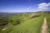 views from crickley hill country park near glouces poster