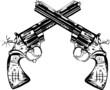 magnum guns