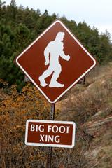 beware of bigfoot