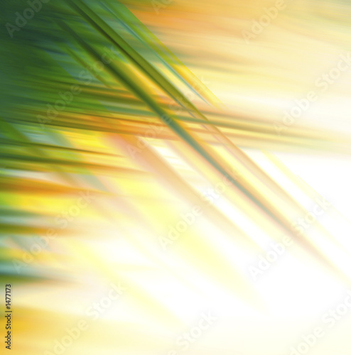 background - 1477173