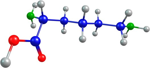 the 3d-rendered colorified molecule of lysine