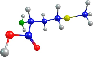 the 3d-rendered colorified molecule of methionine