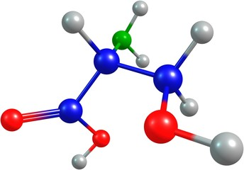 the 3d-rendered colorified molecule of serine