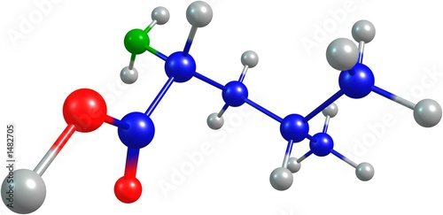 the 3d-rendered colorified molecule of leucine