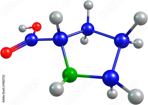the 3d-rendered colorified molecule of proline