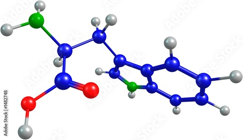 the 3d-rendered colorified molecule of tryptophane