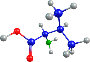 the 3d-rendered colorified molecule of valine