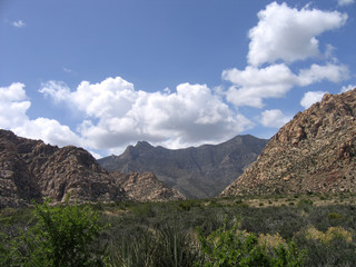 red rock canyon #15