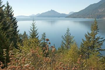 furry lake, vancouver, bc 4