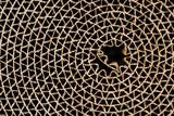 cardboard circle poster