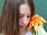 shy flower poster