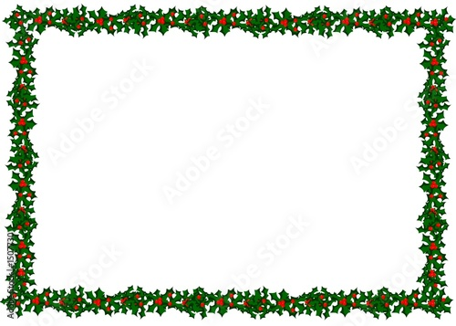 holly border - 1507730