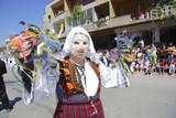 street carnival in kavadarci poster