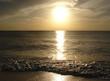 silvery sunset