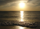 silvery sunset poster
