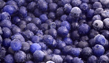 frozen blueberries poster