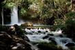banias stream
