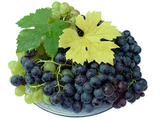 fresh grapes on the dish