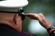 old marine salutes - 1517947