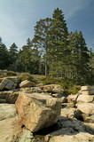 boulders and trees acadia national park maine poster