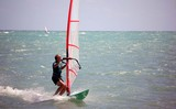 older male windsurfer poster