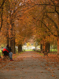 lovers sitting on a bench in the park in autumn poster