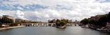 france, paris: panorama of