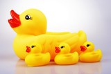 rubber duck poster