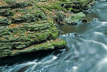 flowing stream and moss covered rocks