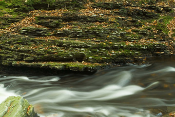flowing stream with moss covered rocks