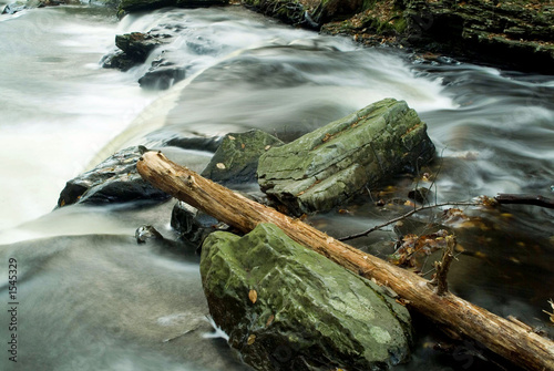 poster of fallen tree log laying in flowing stream