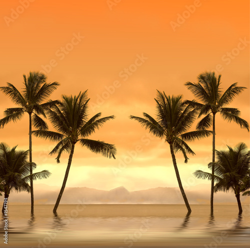 canvas print picture tropical dream sunset