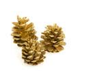 golden pine cones poster