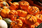 basket of holiday pumpkins