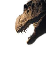 dinosaurios 19